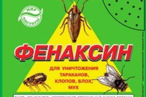 Инсектицидный порошок