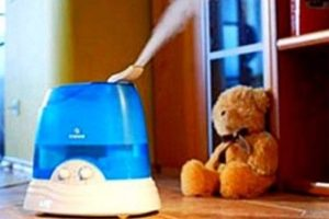 Как увлажнить воздух в комнате без увлажнителя: легкие способы добиться оптимальных показателей влажности