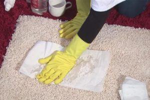 Кошачий запах на ковре