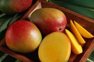 Очищенный и целый манго