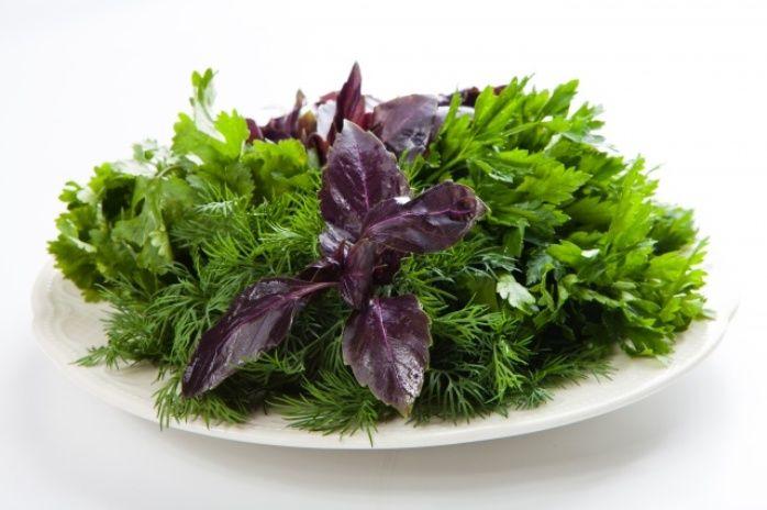 Как хранить зелень свежей: советы по длительному и не очень хранению зелени в холодильнике