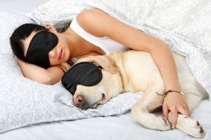 Девушка с собакой в кровати