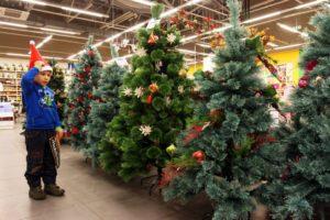 Несколько елок в продаже в гипремаркете