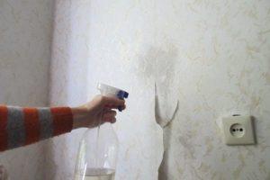 Распыление воды на стены пульверизатором