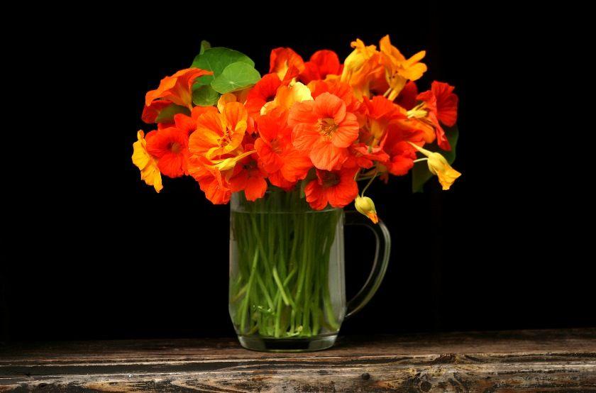 Как сохранить цветы в вазе подольше: дельные советы