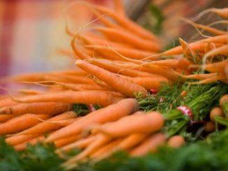 Морковь с листьями