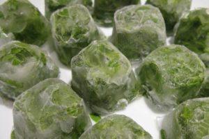Замороженная мята в кубиках