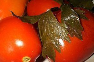 Несколько соленых томатов с петрушкой
