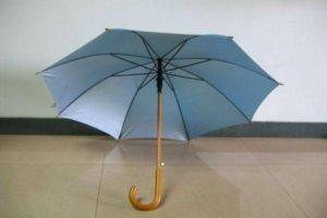 Зонт в открытом виде